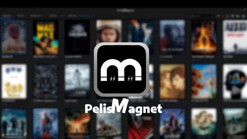 Pelismagnet apk WINDOWS