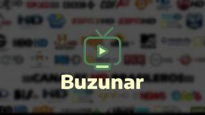descargar Buzunar TV APK