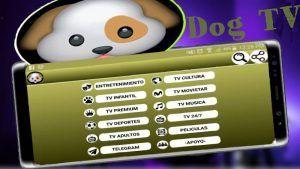 Dog TV APK última versión: Descargar en Android