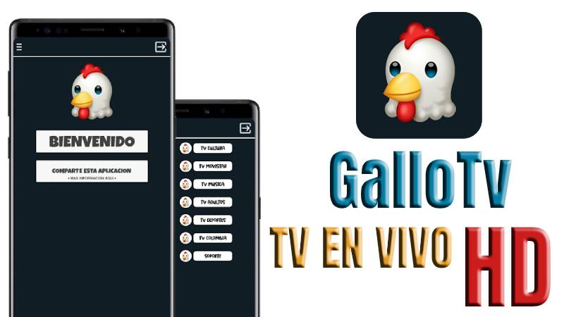 Gallo TV