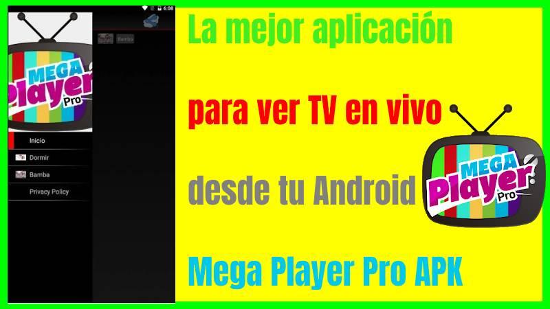 Mega Player Pro