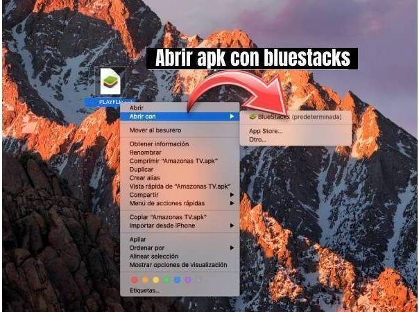 PLAYFLIX apk para Windows